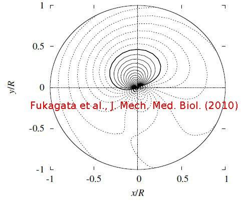fukagata-jmmb10.jpg